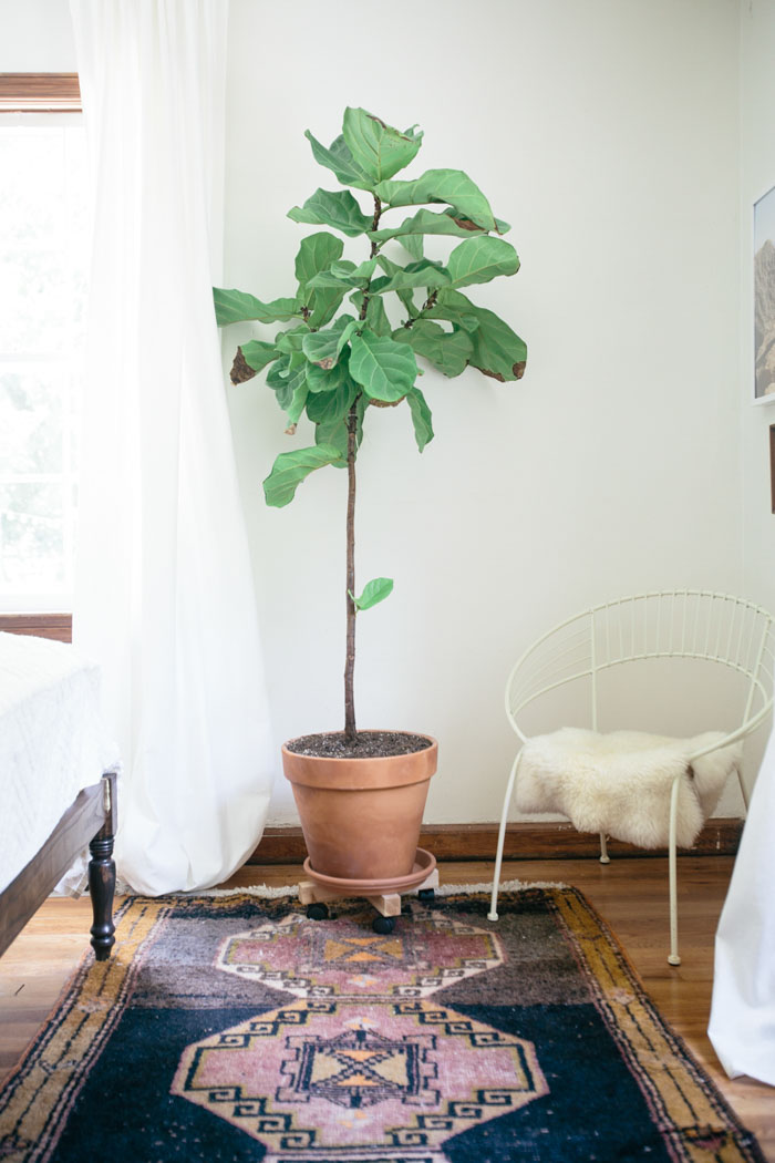 Inspiraci n decoraci n una casa de alquiler que parece un - Blog de decoracion de casas ...