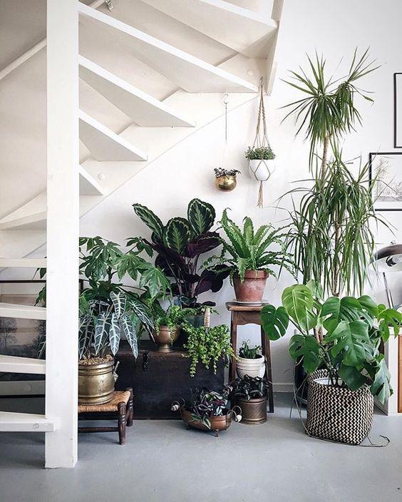 5 formas de modernizar tu decoraci n con lionshome for Formas para decorar una casa